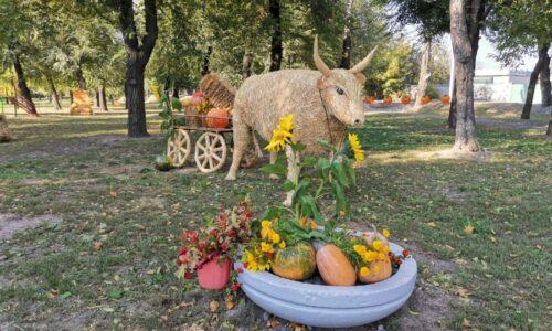 У Дніпрі в Амурському парку відсвяткували День гарбуза — Новини Дніпра — Новости Днепра