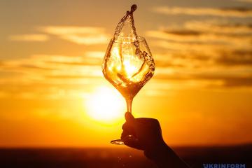 На Берегівщині створять новий мистецький проєкт «Виноградна лоза»