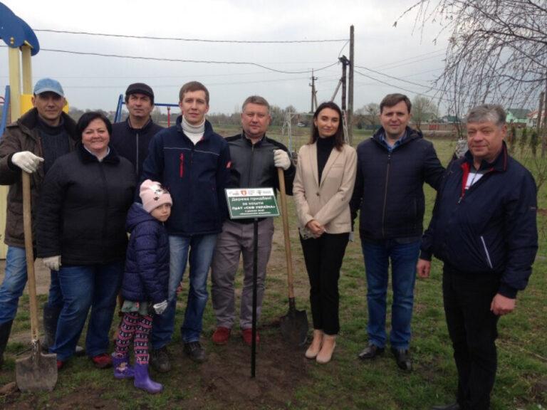 У селі біля Луцька висадили 660 декоративних дерев – Новини Волині