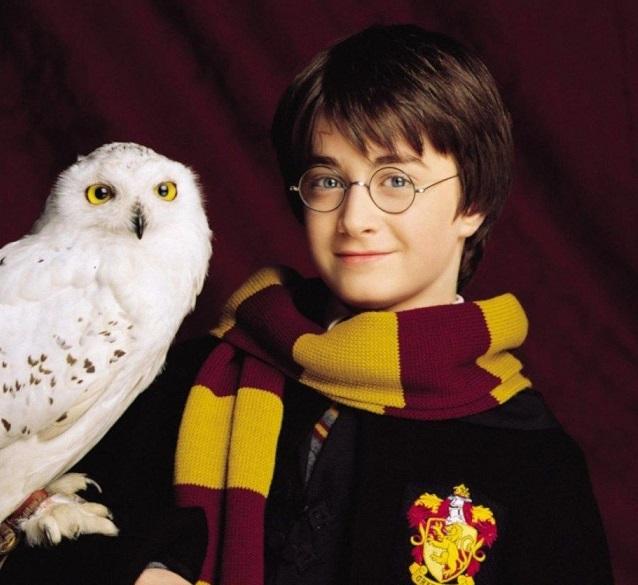 В шоу о Гарри Поттере больше не будут использовать сов