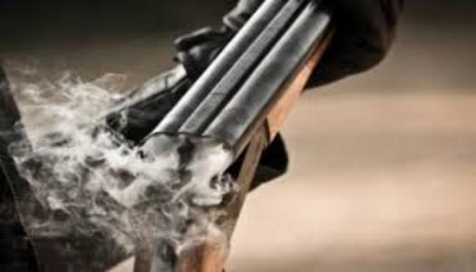 Мін'юст США подав пропозиції щодо посилення заходів регулювання обігу зброї » – Новости мира