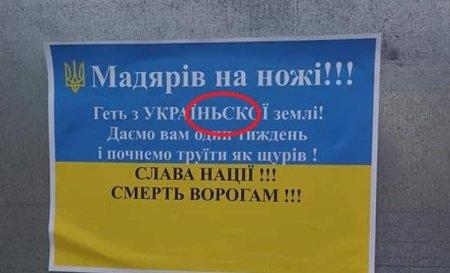 На Закарпатті розповсюджували листівки з погрозами українцям угорського походження | Кримінальні новини