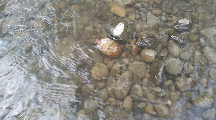 У Латориці під час купання знайшли гранату РГД-5 (Фото)