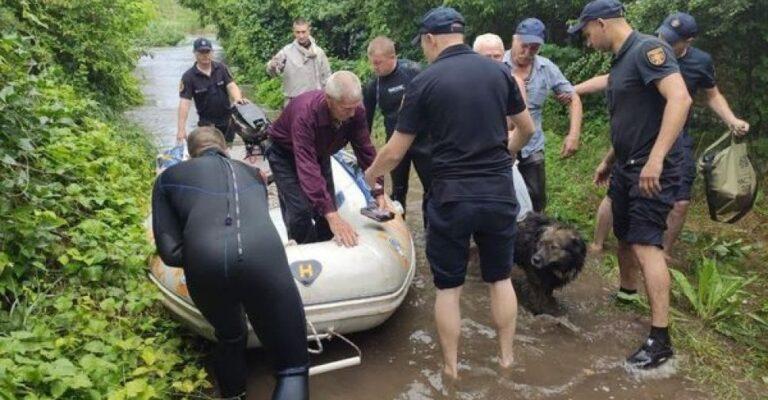 Вода переливается через плотину Старокрымского водохранилища – в Мариуполе спасают людей. Новости Мариуполя и Донбасса |