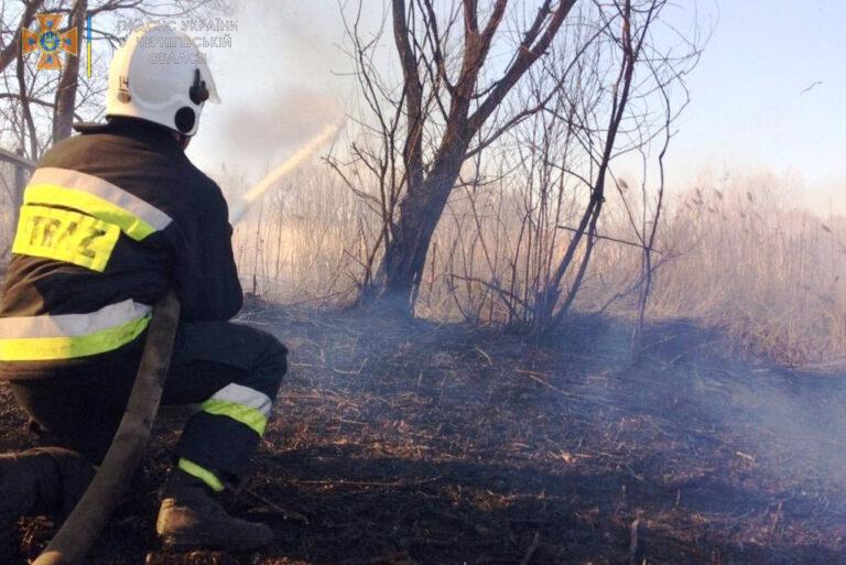 Чернігівська область: впродовж минулої доби рятувальники ліквідували 9 пожеж у природних екосистемах – Новини Чернігова та області